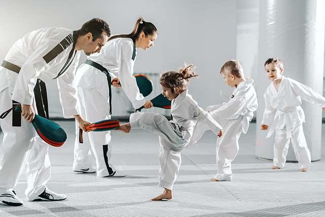 Adhdtkd3, Integrated Martial Arts