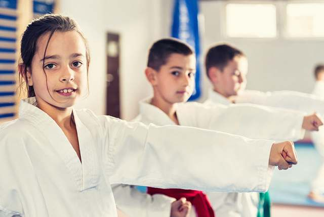Kidsadhdjpg, Integrated Martial Arts