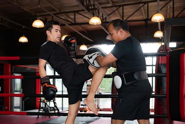 Muaythai3, Integrated Martial Arts