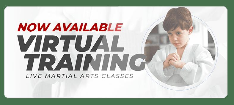 VIRTUALPOPUPSPARK.1.1, Integrated Martial Arts