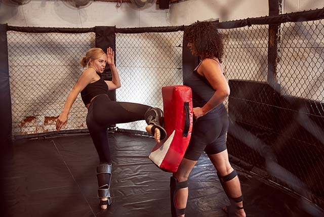 Mma1, Integrated Martial Arts