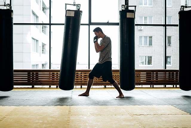 Mma2, Integrated Martial Arts