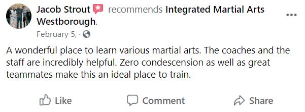 Adult1, Integrated Martial Arts